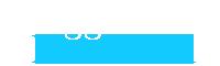 Logo Viaggi Leonardi